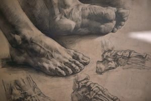 Foot Ilustration